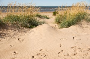 Hailuodossa voit viettää päivän vaikkapa hiekkarannalla makoillen. (Kuva: Hailuodon matkailu)