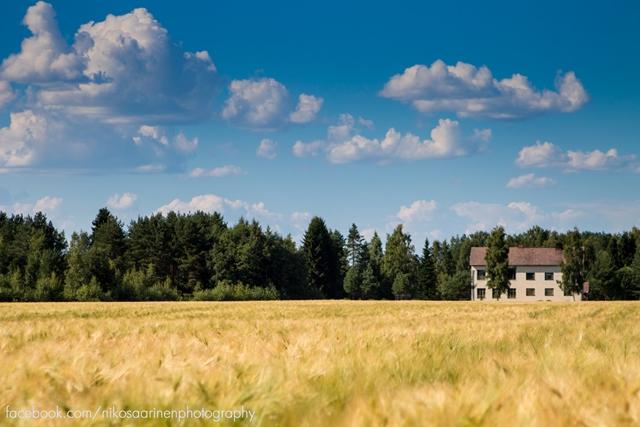 Yli-Valli, Jalasjärvi. Kuva: Niko Saarinen Photography