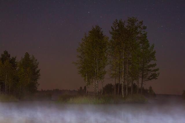 Liikapuron tekoallas, Ala-Valli, Jalasjärvi. Kuva: Niko Saarinen Photography