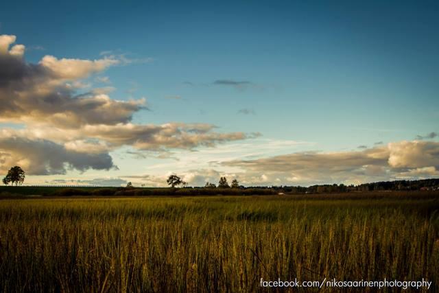 Näkymä Jalasjärven rannalta. Kuva: Niko Saarinen Photography