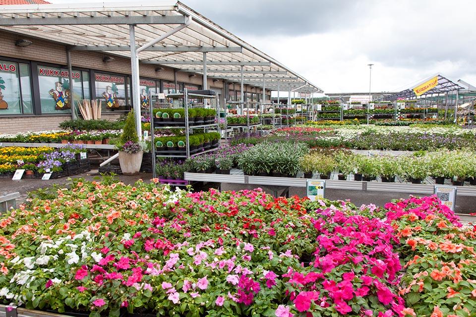 Kukkatalon taimistolla riittää valinnanvaraa. Kuvan lähde: Pirilän Kukkatalo