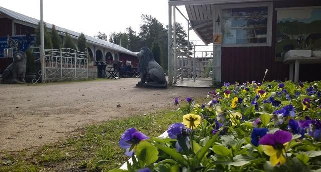 Orvokit ja puiston sisäänkäynti.Kuva: KivaaTekemistä.fi