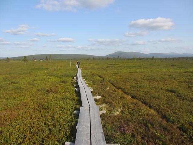 Reitin pisimmät pitkospuut johdattavat Pahakurun taukopaikalle. Kuva: KivaaTekemistä.fi