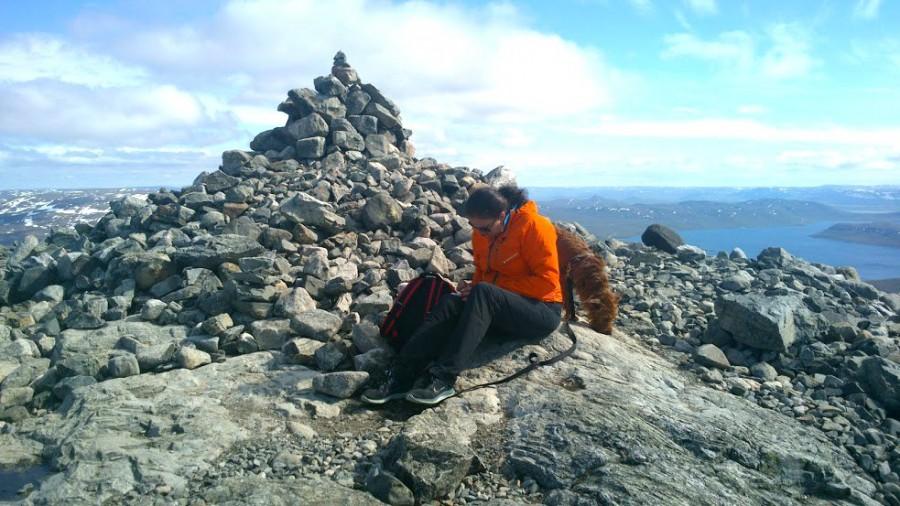 Kirjoittaja huipulla, jossa tuulee. Saana huiputettu 26.6.2015.