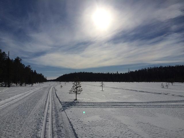 Muonion laduilla kelpaa hiihdellä kevät-talvella. Kuva: KivaaTekemistä.fi